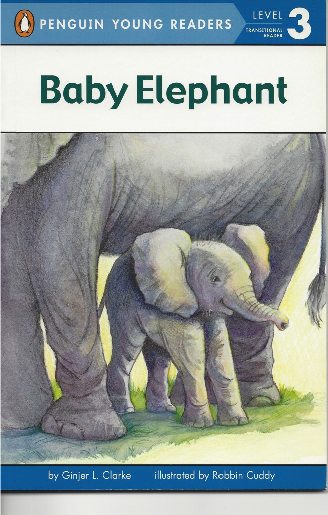 BabyElephant2
