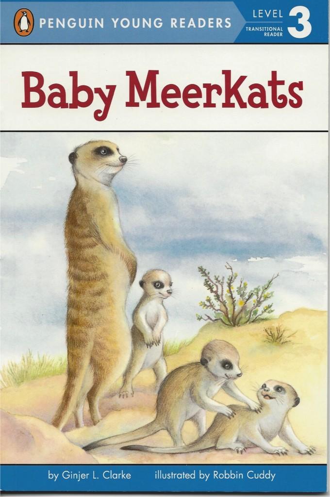 BabyMeerkats2