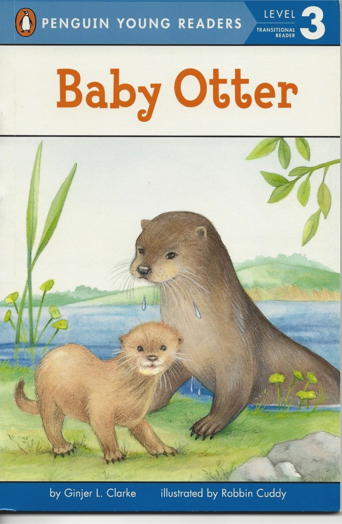 BabyOtter2