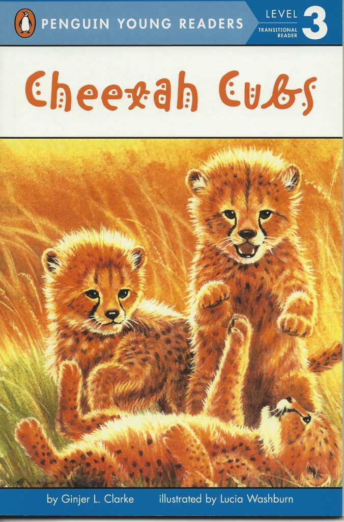 CheetahCubs2