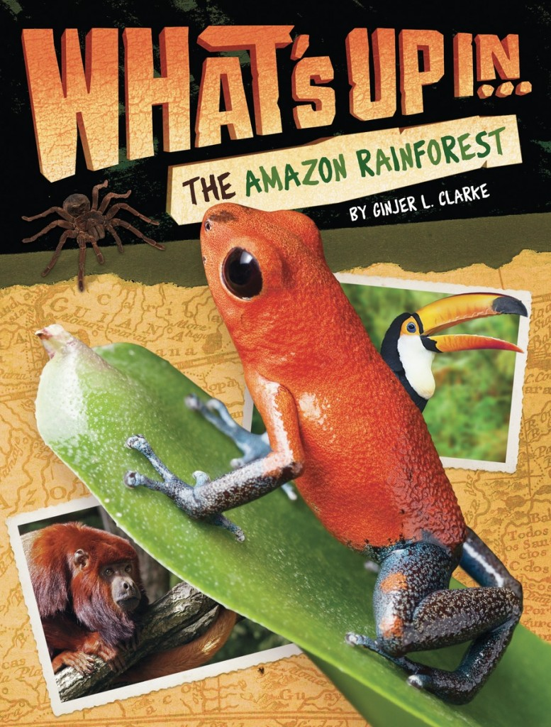 WUAmazonCover